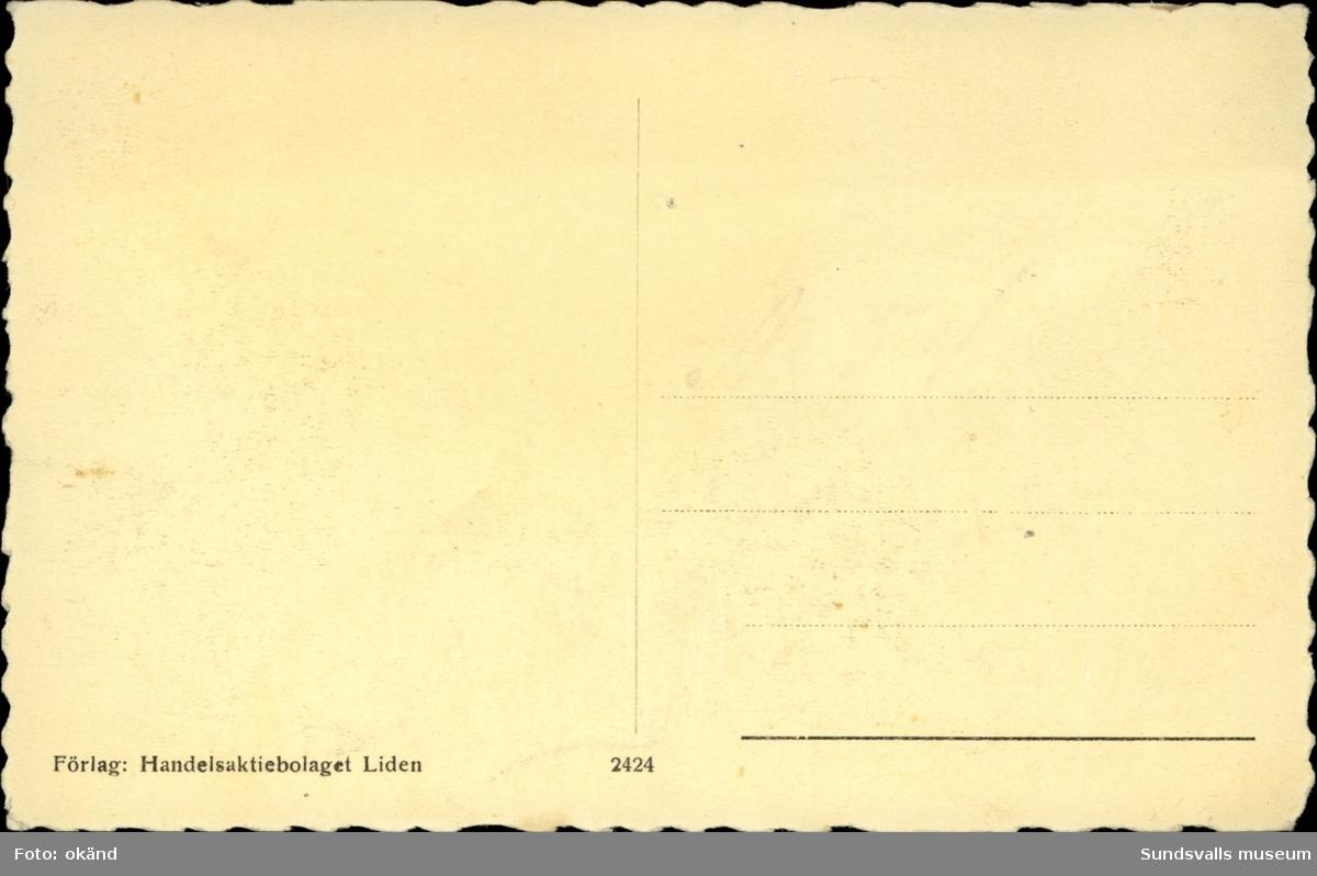 Vykort med motiv över Indalsälven och Lidens färjeläger.