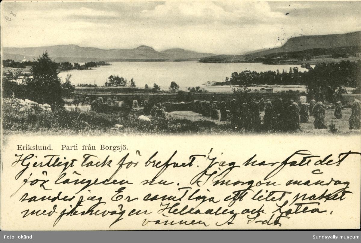 Vykort med motiv över parti av Borgsjö i Erikslund.