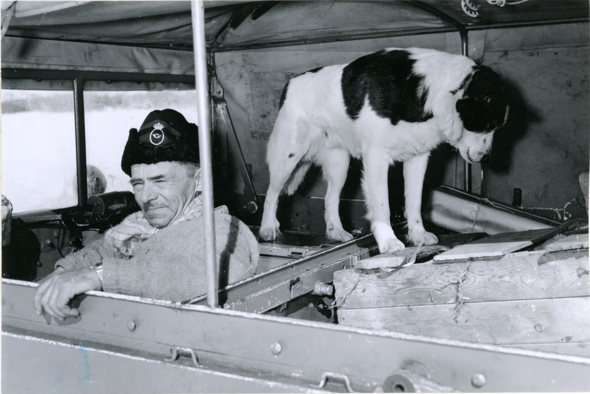 Lantbrevbärare Oskar Johansson,  Vuonatjviken, körande snövessla på linjen Långudden-Vuonatjviken  (33 km.)  Hunden är hans trogna ressällskap. April 1952.