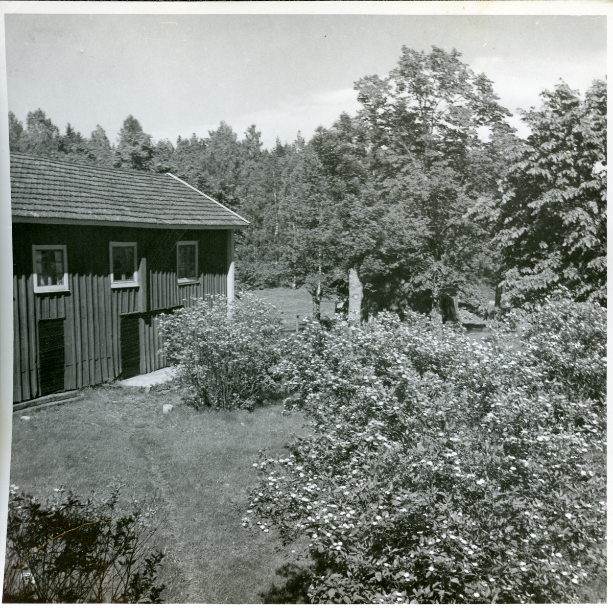 "Norberg sn, Norberg, Lilla Bråfors. ""Hedlunds gård"". 1949."