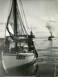 Fjordbåter i Oslo havn.