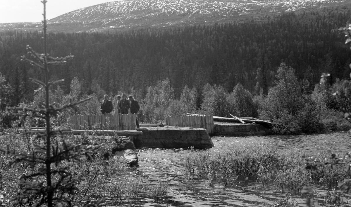Nåledam av store steinblokker og tømmer. 4 pers. på dammen.