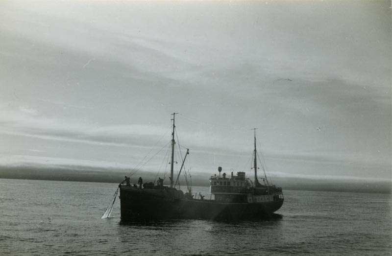 """Fiskebåten """"Eldøy"""""""