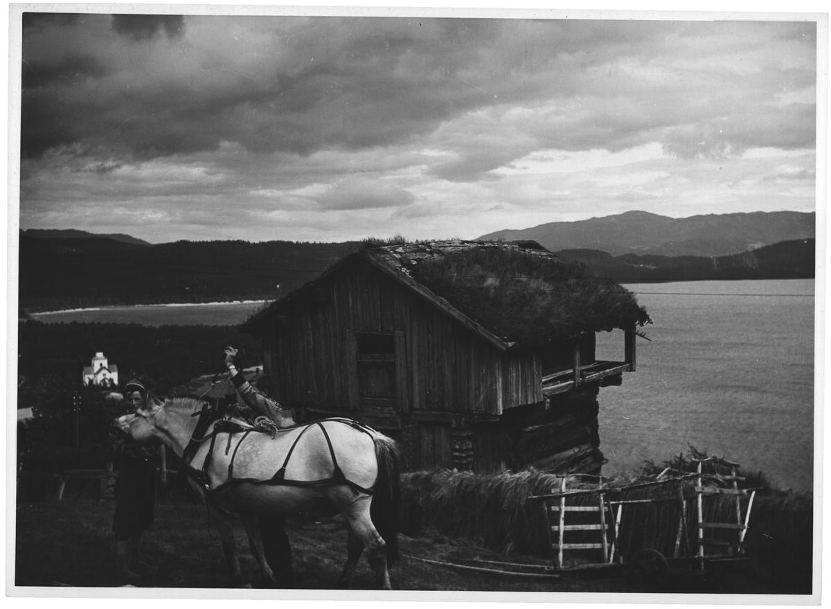 Rauland, Telemark