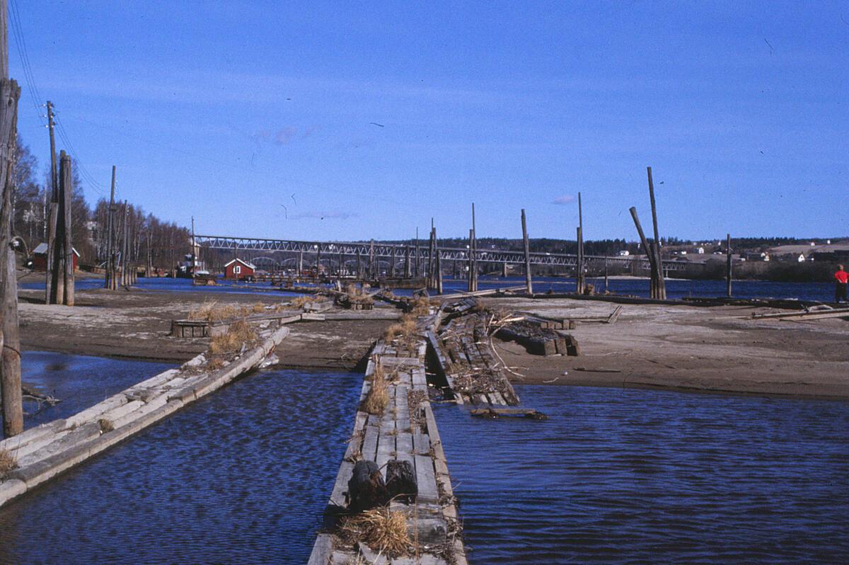 Bilde tatt i 1990. Foto: Elin Mortensen/MiA / Bilde tatt i 1990. Foto: Elin Mortensen/MiA