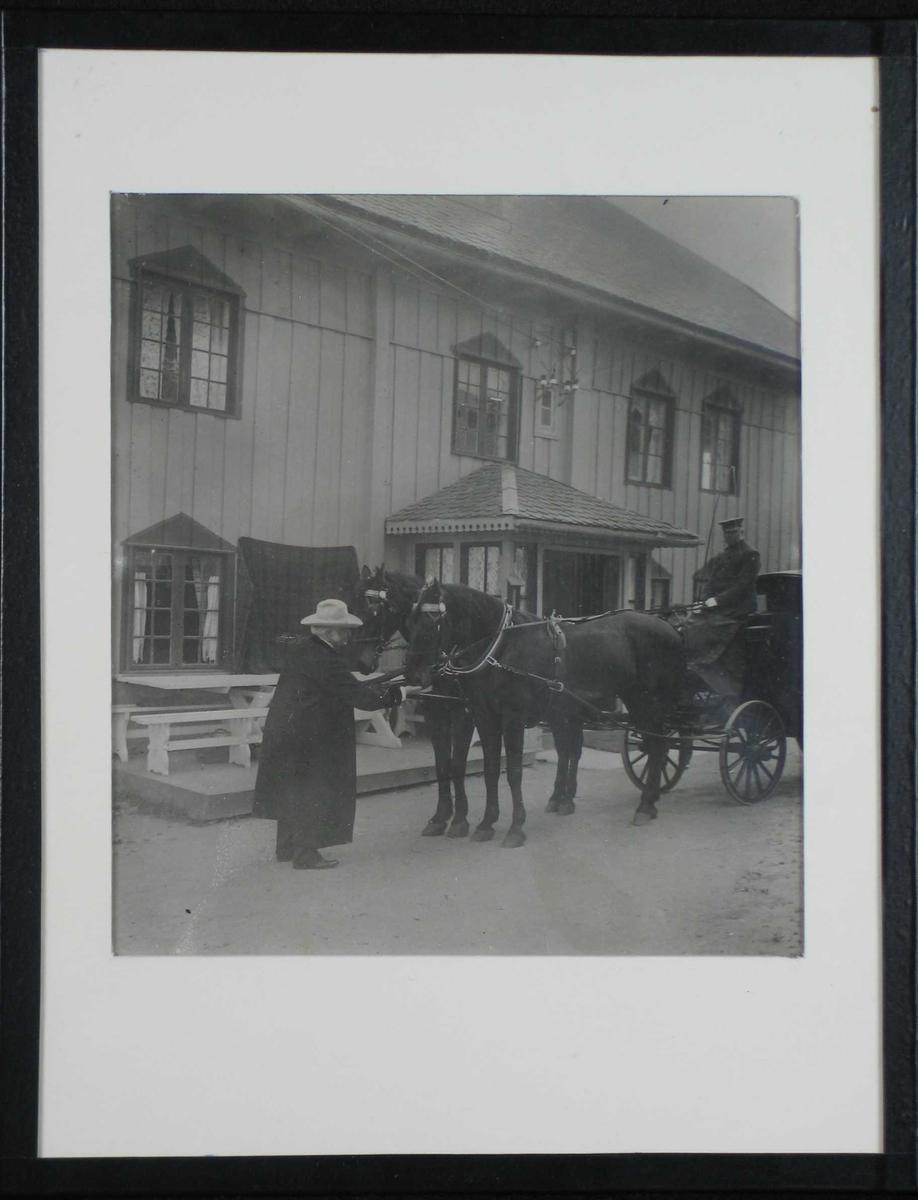 BB foran hovedhuset på Aulestad. To hester spendt foran en vogn med kusk på setet. BB gir hestene sukker.