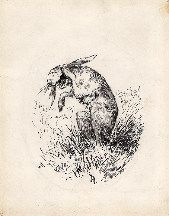 Haren lo så kjeften sprakk [Illustrasjon]