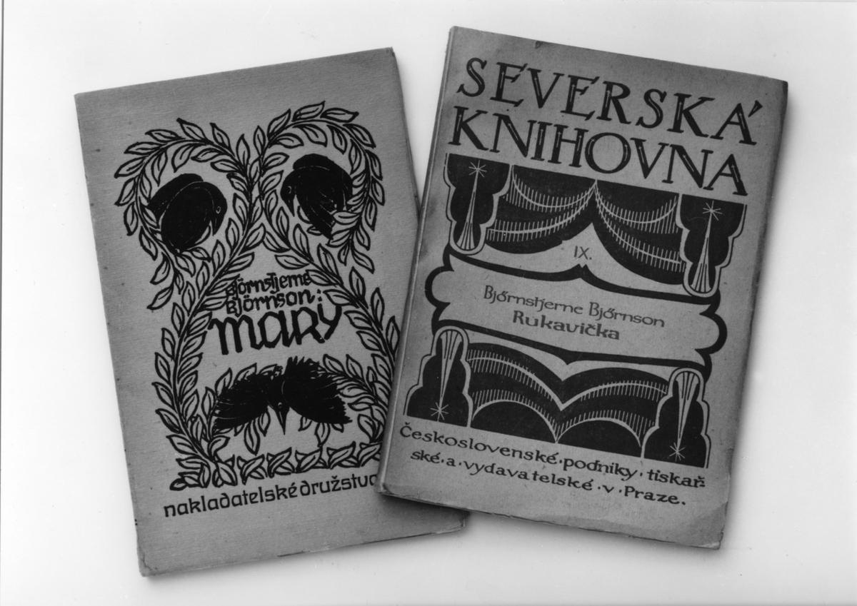 """Bokomslag, oversettelse, """"Mary"""", """"En handske"""""""
