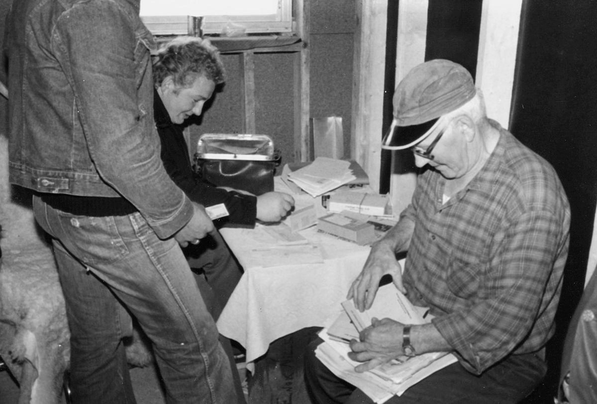 omdeling, postmann, utlevering av post, menn, 7. postdistrikt