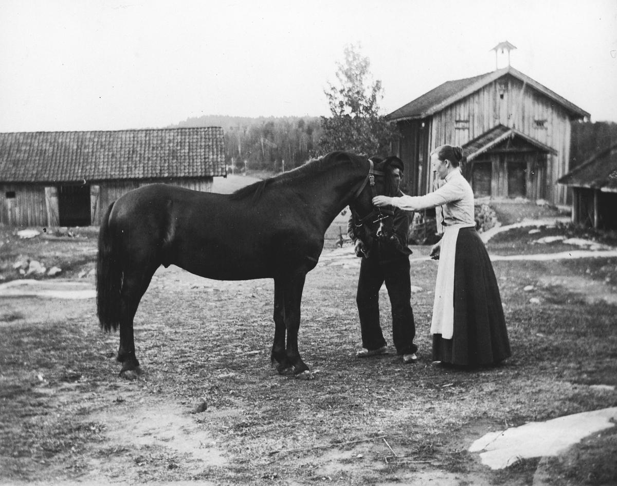Kvinne og mann med hest på gårdstun. Tunet på vestre Greverud gård. Solverius, Skippern og Antonette Skjerven.