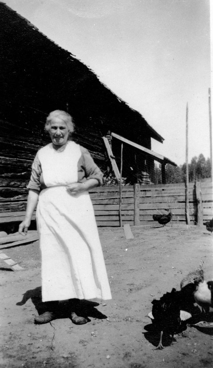 Eldre kvinne, høns, gjerde, uthus