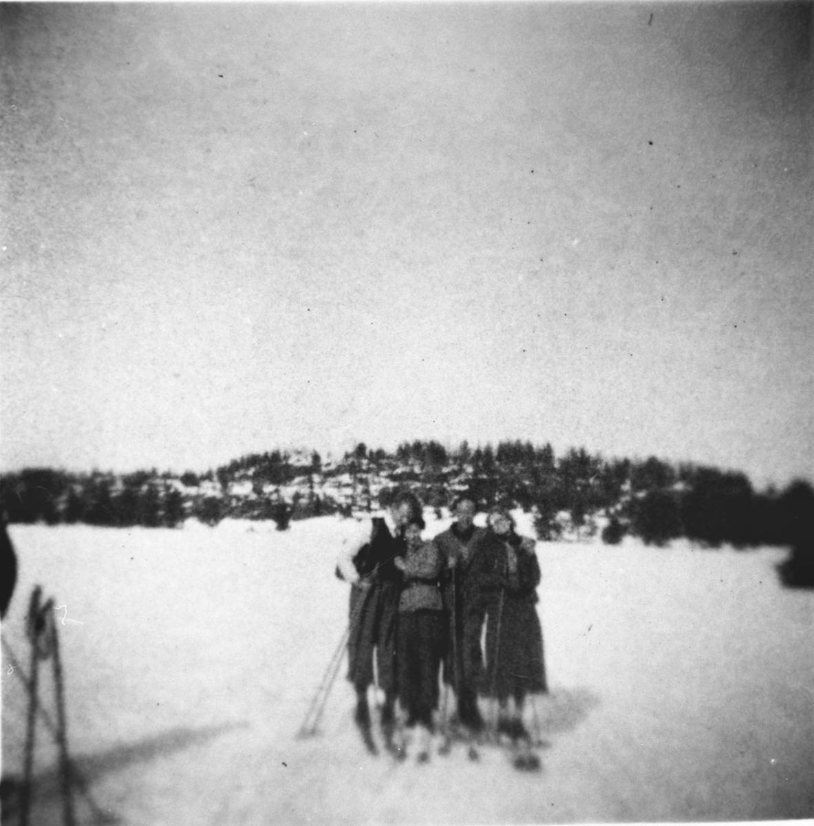 Skitur over Storeplassen, ant. Garderfjell i bakgrunnen