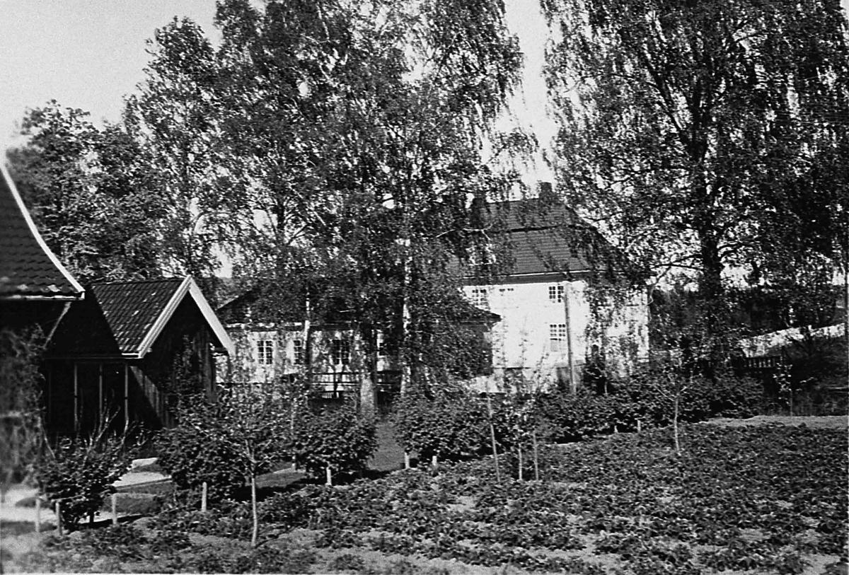 Hus med grønnsakhage