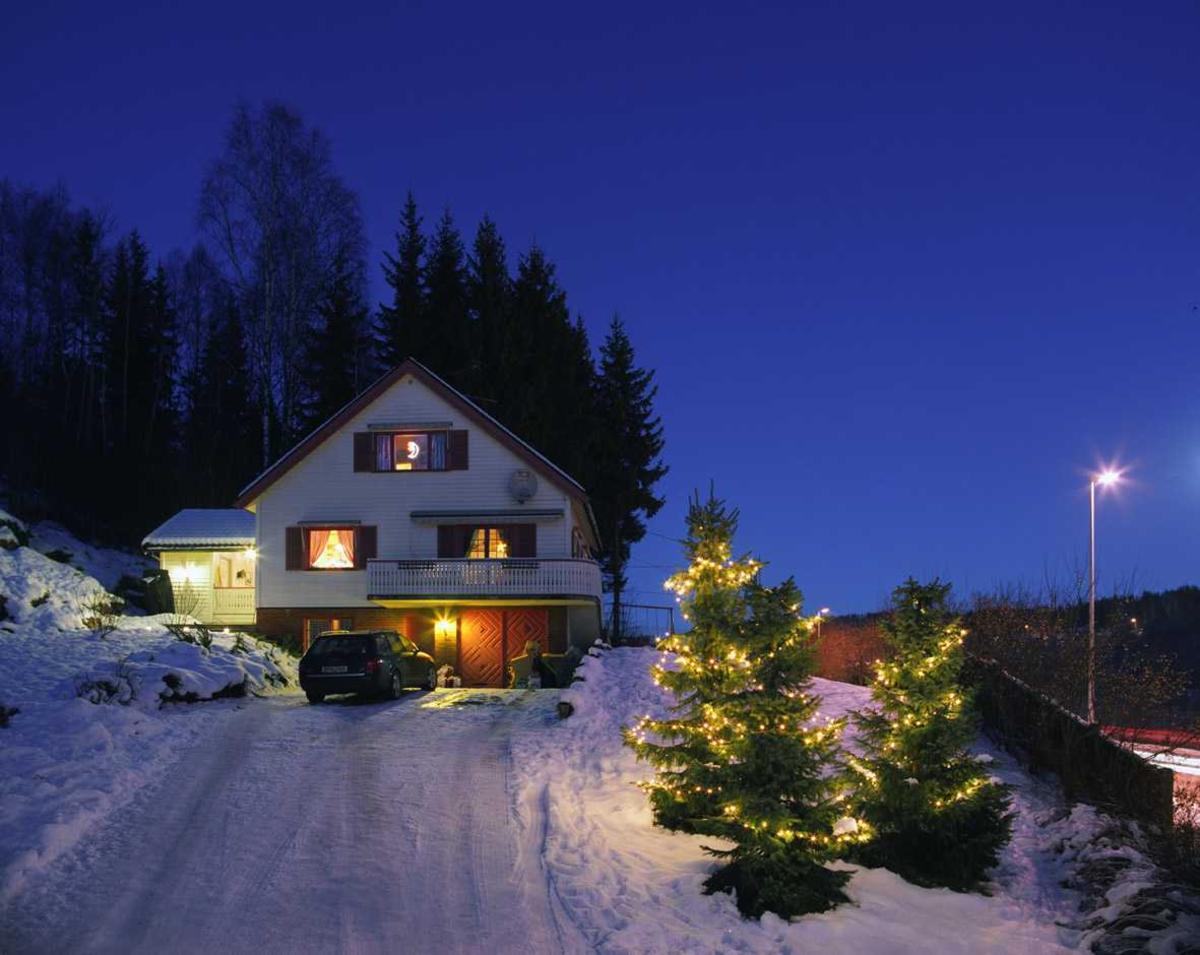 Julebelysning  Hvit julebelysning i lenke på tre graner ved enebolig