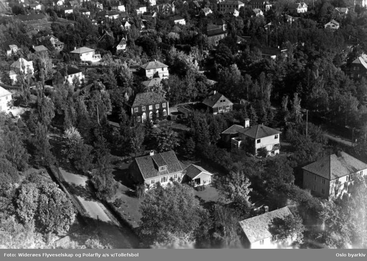 Villaer ved Charlotte Andersens vei på Vinderen. (Flyfoto)