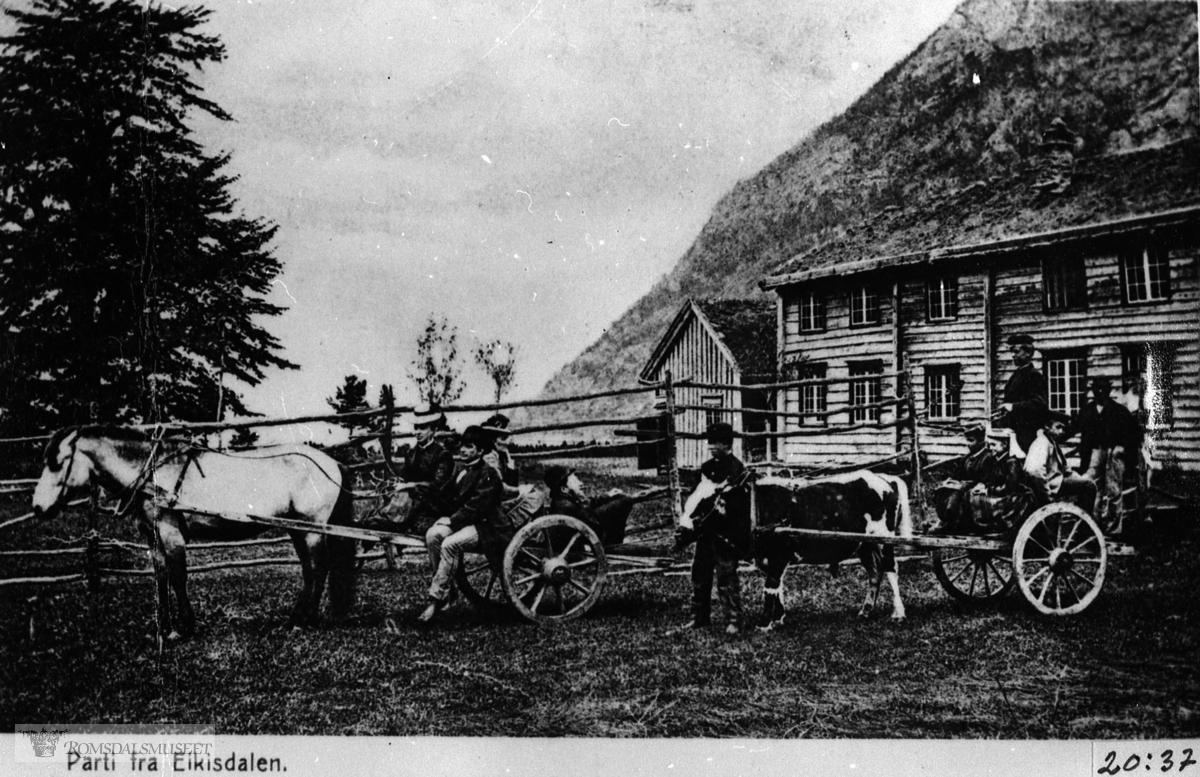 Hest og vogn, okse og vogn i samband med Jørgen B. Lysholms besøk i Eikesdal i 1874...