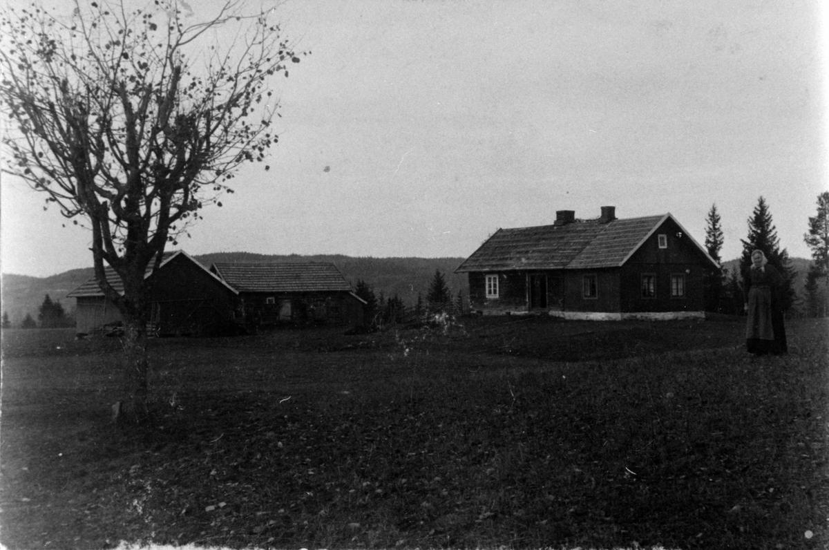 HUSA, KAREN JONSGÅRD (1834-1926) TIL HØYRE, JONSGÅRD, NES