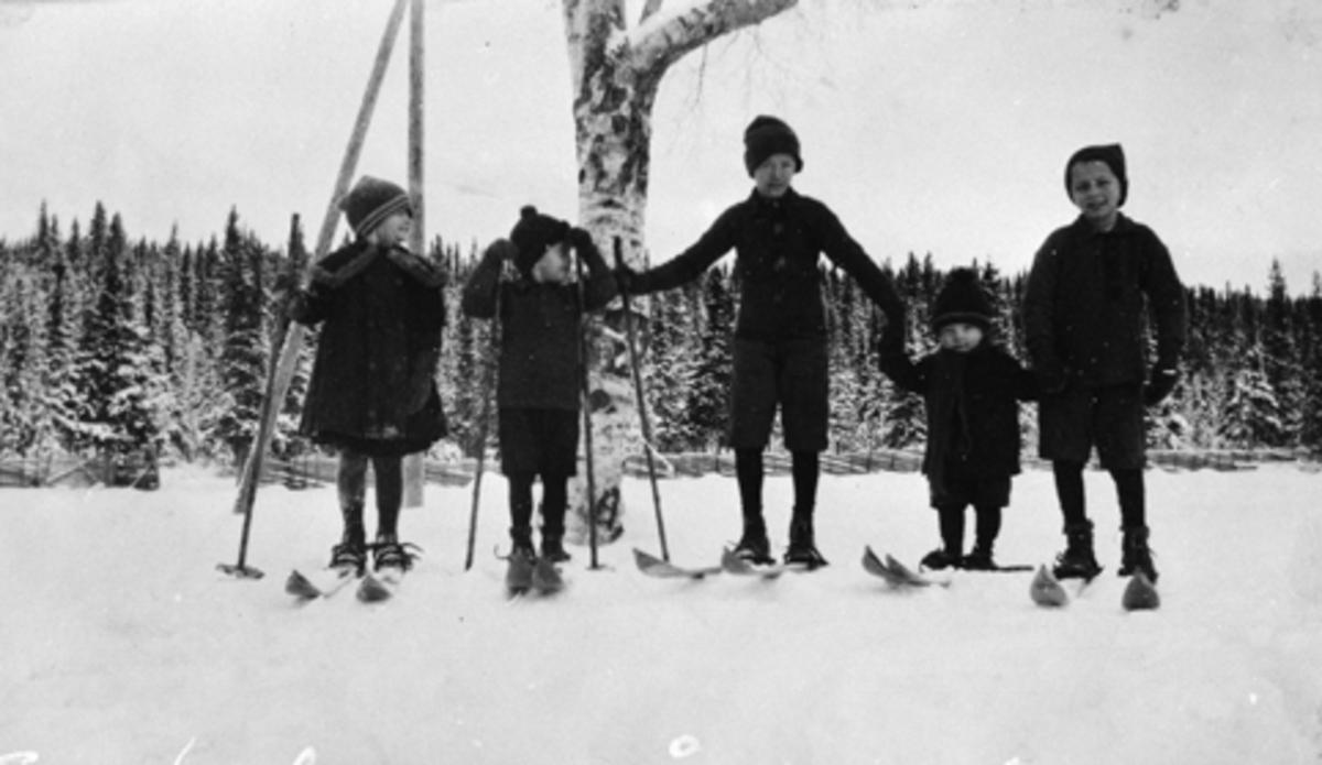 Eksteriør, Arnestad søndre, Mesnalia, Ringsaker. 5 barn, søsken på ski.