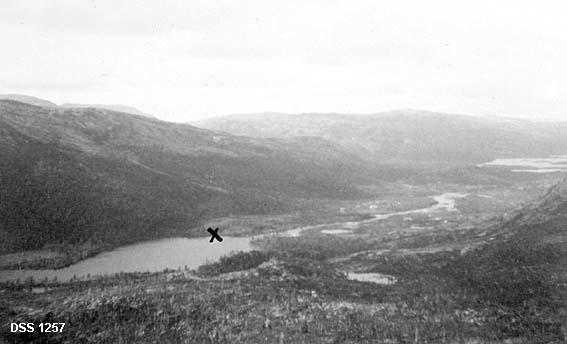 Sørvassdalføret i Vefsn på Helgeland (Nordland fylke).  Utsiktsbilde, tatt fra åsrygg ned mot et dalføre med stilleflytende vassdrag.  Åskammene på begge sider av vassdraget later til å være skogbare, men det vokser skog i dalen.  Et kryss, påført med tusjpenn, markerer en lokalitet der det er forsøkt utsatt bever.