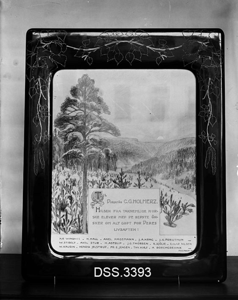 Reproduksjon av innrammet hilsen til professor C. G. Holmerz fra studenter.  Hilsenen er skrevet på ei papirflate med ei tegning av ei stor furu med vekstervillig underskog.  Dokumentet er innrammet i ei mørklakkert treramme som er dekorert med strekfigurer av blader og rakler fra bjørk.   Conrad Georg Gottfrid Holmerz (1839-1907) var en innflytelsesrik svensk forstmann.  Etter å ha arbeidet i offentlig skogforvaltning ble han i 1872 lektor ved Skogsinstitutet i Stockholm i 1872.  Holmerz var direktør for det samme instituttet i perioden 1895-1903.  Han skrev flere bøker som fikk stor skogfaglig innflytelse, blant annet «Handledning skogskötsdeln i Norrland» (1877) og «Vägledning i skogshushållning» (1894).
