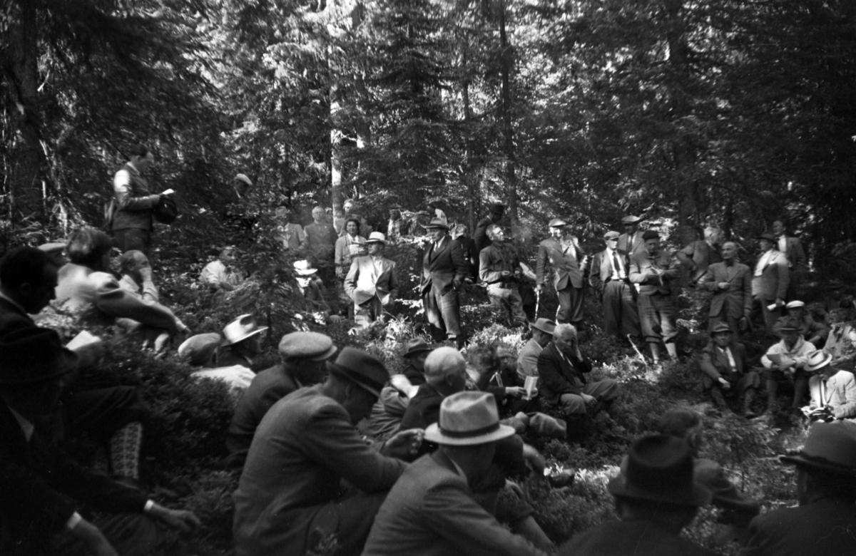 Buvika sagbruk, skogbefaring, Ringsaker allmenning. Juni 1949. Stor gruppe menn samlet i skogen.