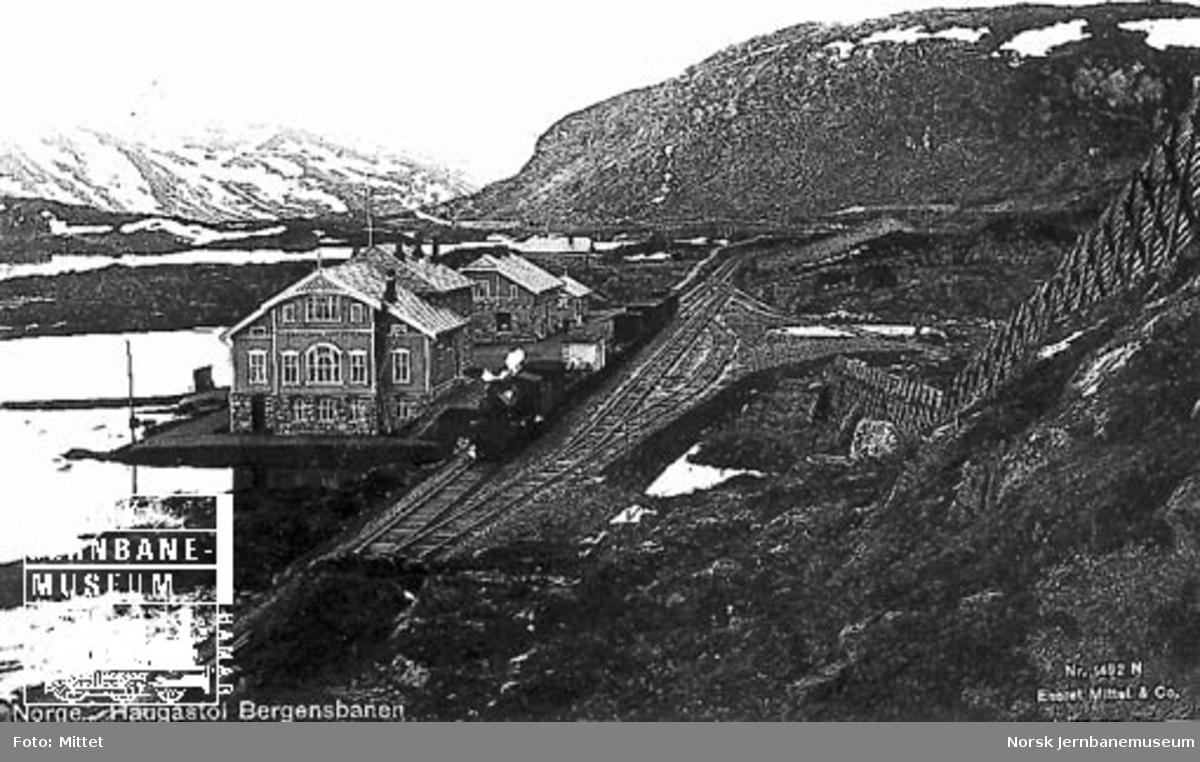 Damplokomotiv med godstog på Haugastøl stasjon