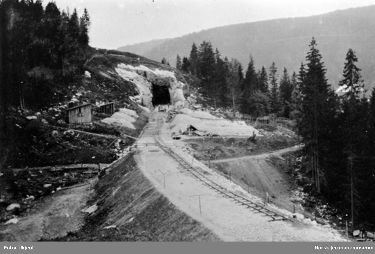 Traseen mot Stueberget tunnel, sett sørover, med smie og hvilebu til venstre