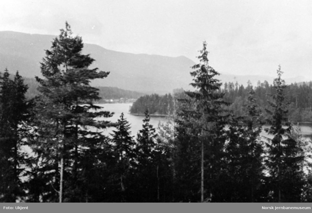 Utsikt fra Fjøsvikmoen mot Killingstrømmen og med Fjøsvikbukta i forgrunnen