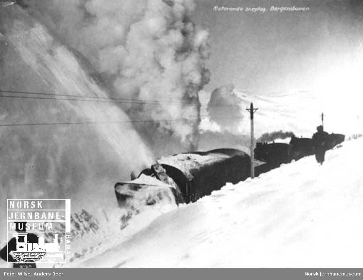 Roterende snøplog skjøvet av to eller tre damplokomotiver i arbeid på Bergensbanen