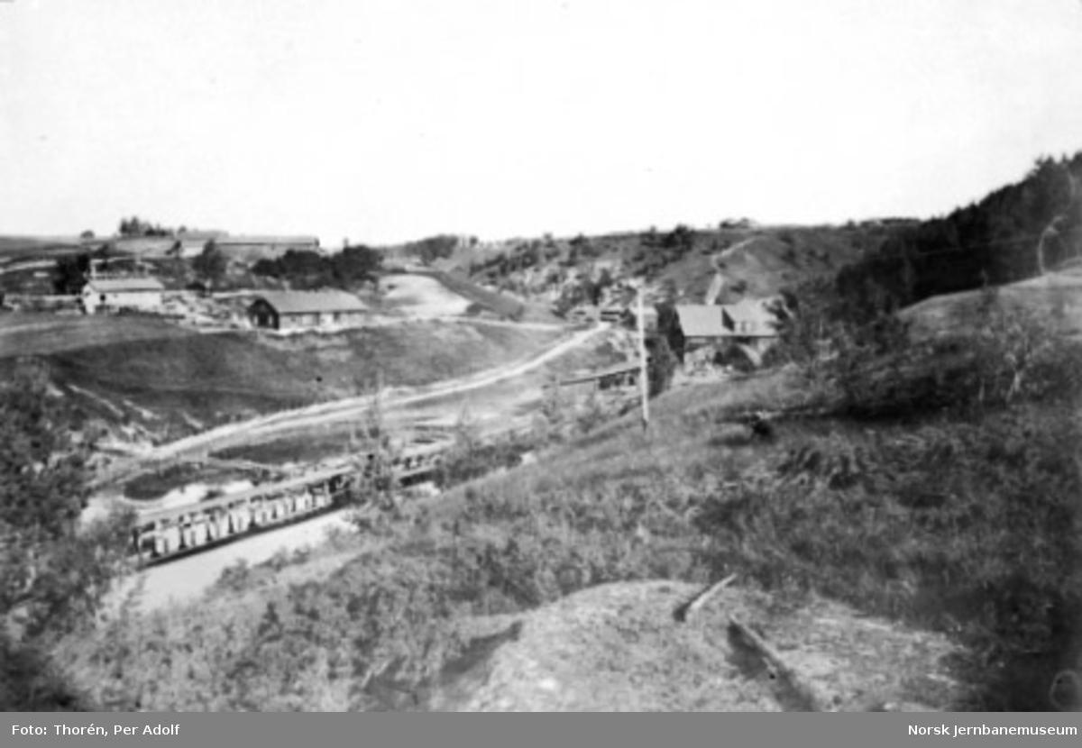 Parti fra Tyristrand med jernbanen på pælebru; et sagbruk i bakgrunnen