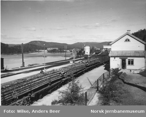 Nelaug stasjon med tømmervogner