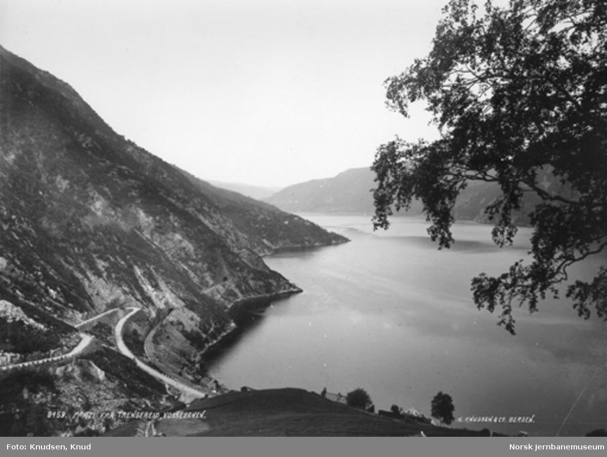 Parti fra Trengereid, oversiktsbilde med Vossebanen langs fjorden