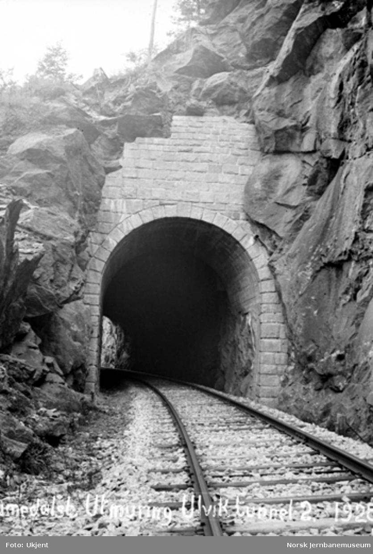 Ulvik tunnel : utmuring