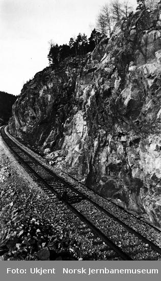 Ukjent parti på Flekkefjordbanen