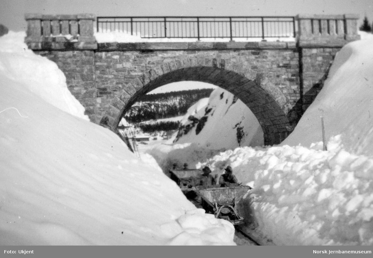 Vegovergang ved Snåsa stasjon