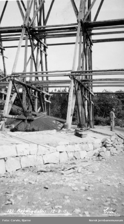 Pillarer i viadukten over Bækengdalen