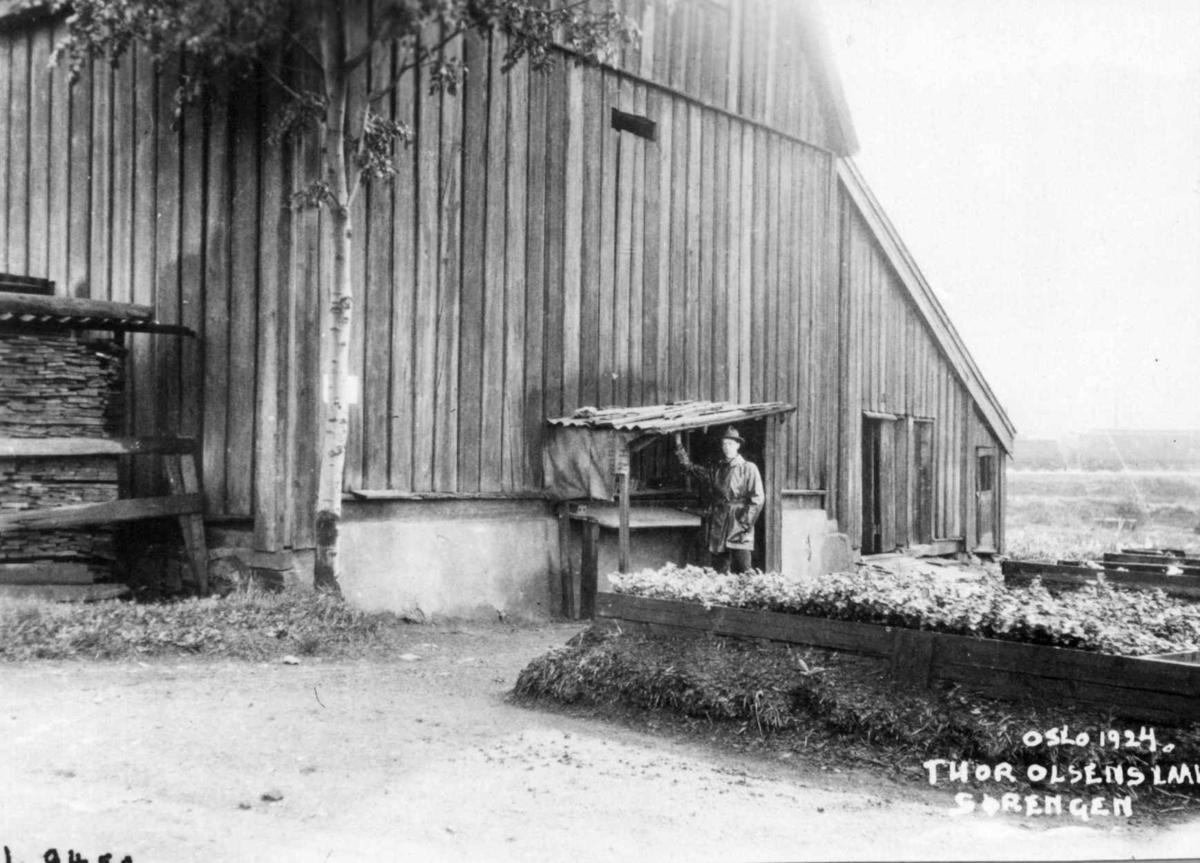 Sørenga, Oslo 1924. Mann foran Thor Olsens låve. Kortveggen.