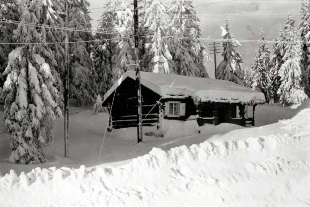 Nordmarka, Oslo. Vinterskog med hytte.