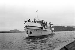 Serie. Dagbladarrangement (Gullfisk i Ålesund). Fotografert