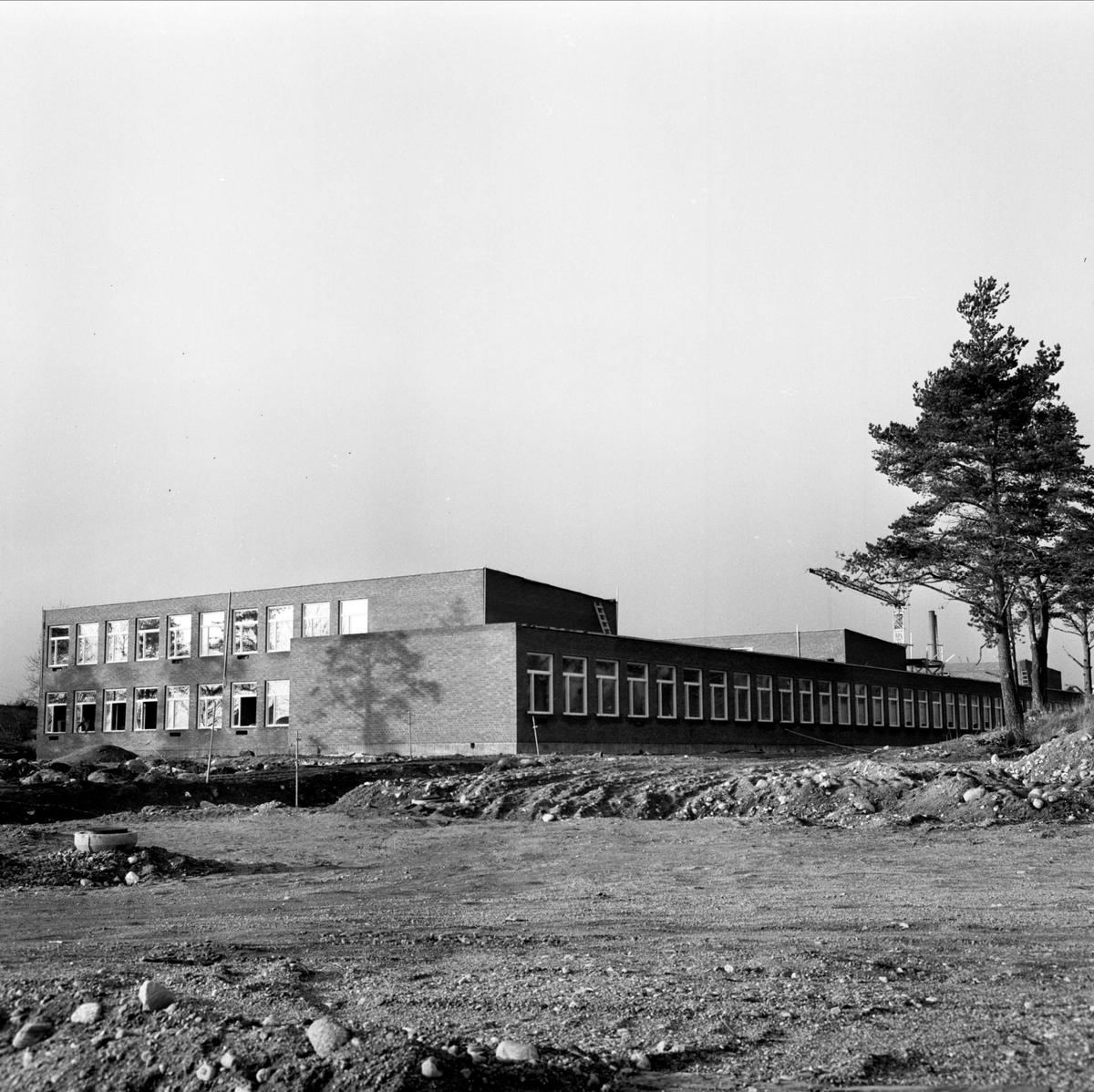 """""""Högstadiet i Tierp"""", Uppland, november 1966"""