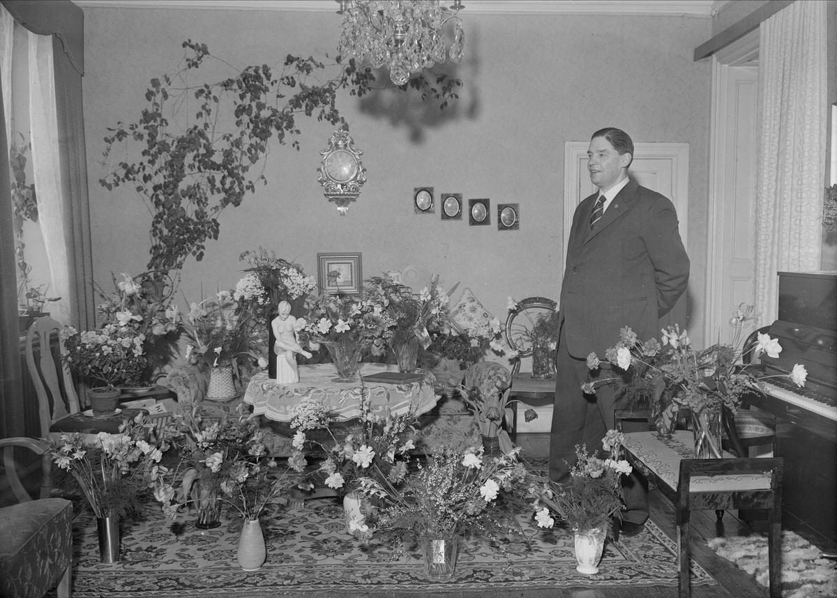 Födelsedagsporträtt - handlare Nils Rapp, Vaksalagatan 29, Uppsala mars 1954