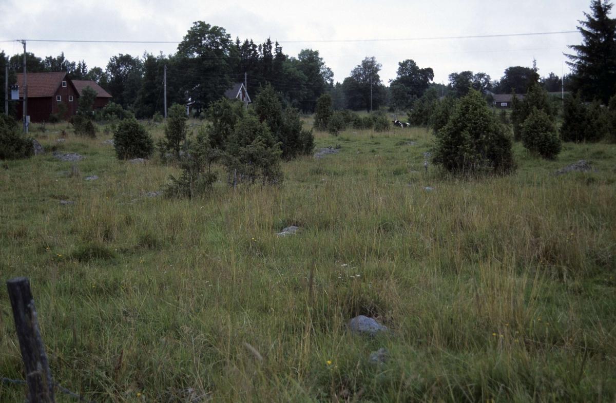 Betesmark, Slada, Hållnäs socken, Uppland 2000