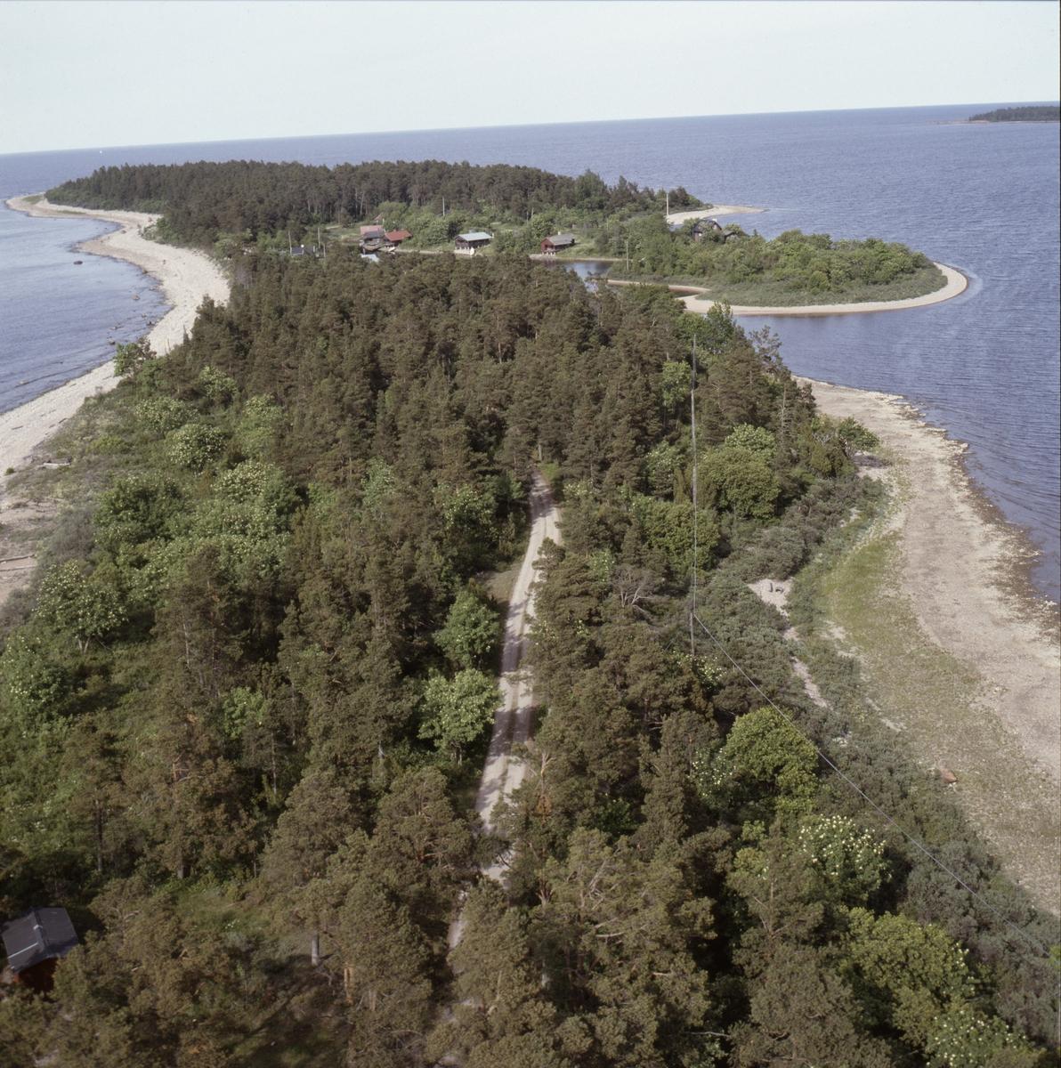 Vy över Billudden och Billhamn, Älvkarleby socken, Uppland, juni 1989