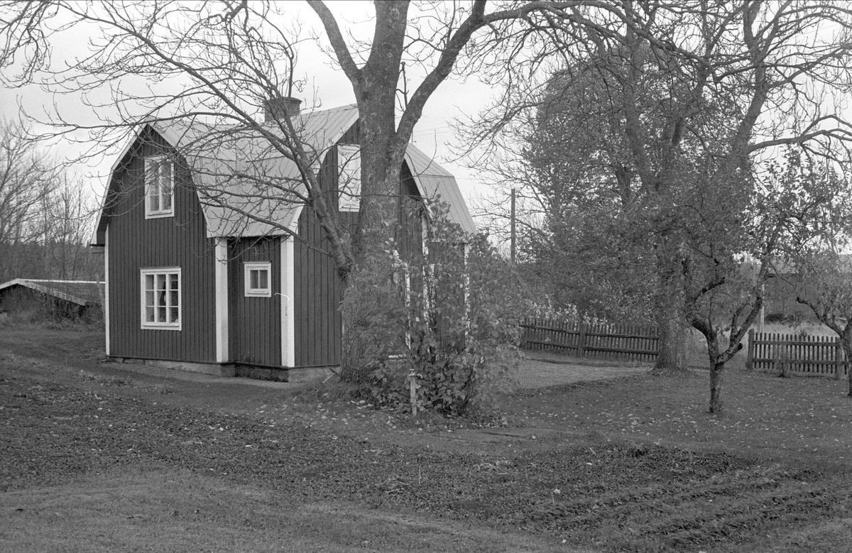 Källare och bostadshus, Hagalund, Kibrunna, Ramsta socken, Uppland 1984