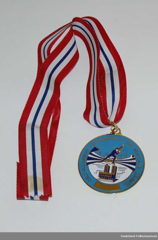 Medalje med gult metall med lyseblå, blå og hvit emalje på forsiden. Idrettstadion, Oslo rådhus og skøyteløper er motivert. TEkst: Oslo-alliansens hedersmedalje for mesterlig innsats. Henger i rødt, hvitt og blått ripsbånd.