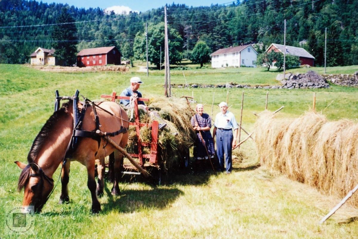 Haustonn med hest og håndemakt på Høyland. Grindheim Audnedal.