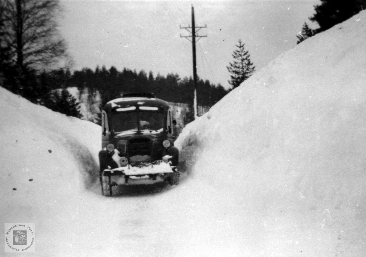 Kolandsheia i Bjelland snøvinteren 1951.