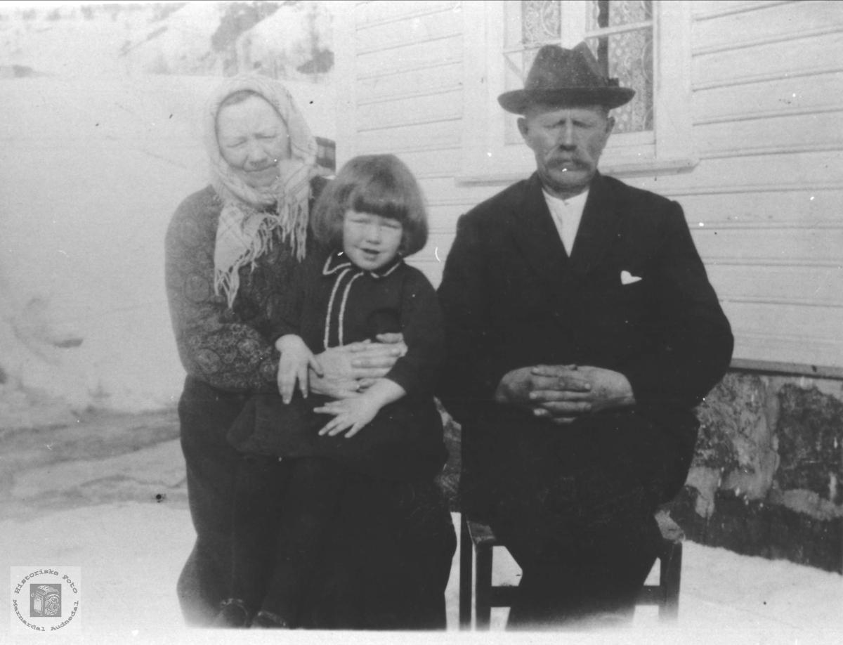 Portrett av familiegruppe, Flystveit, Åseral.