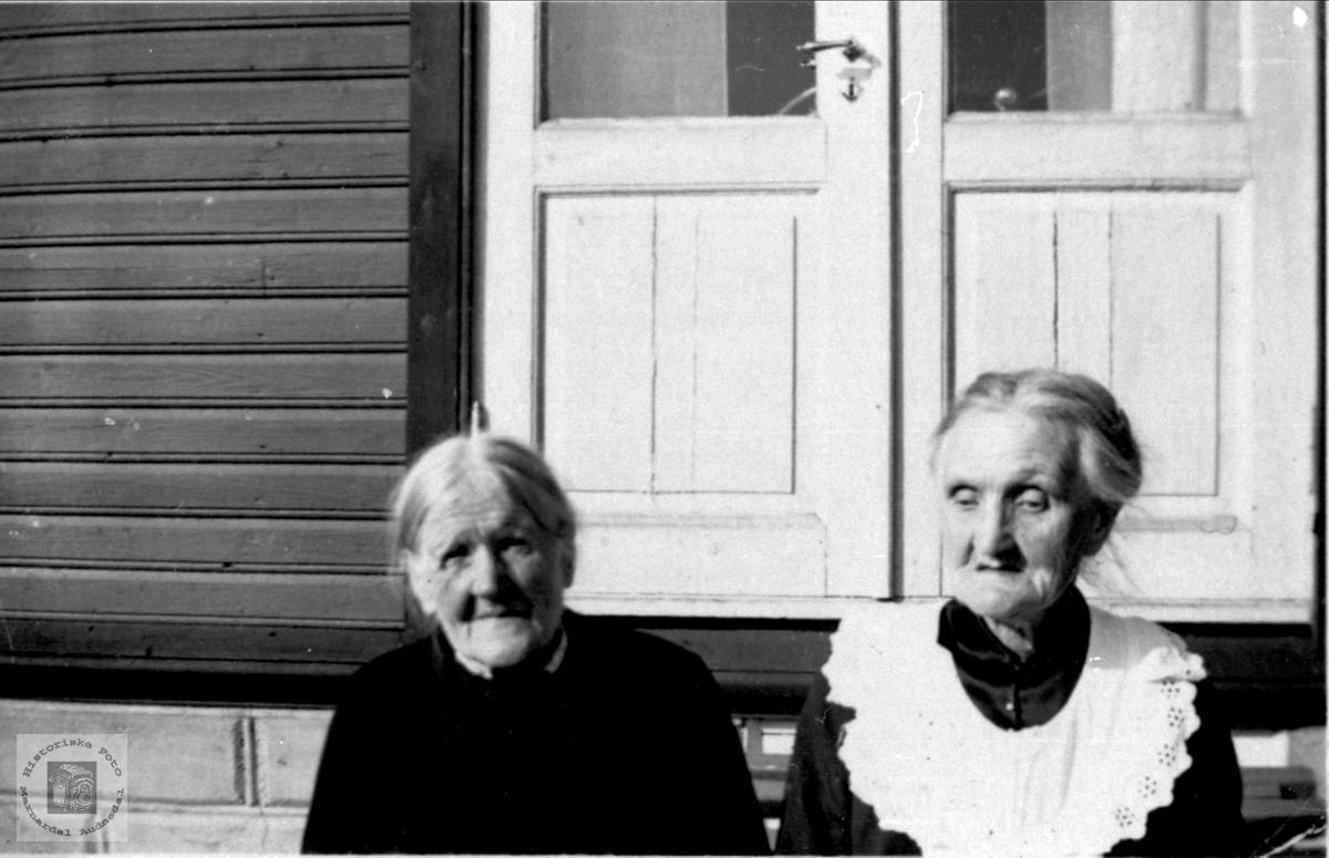 Søstrene Åsa og Anne Øydne.