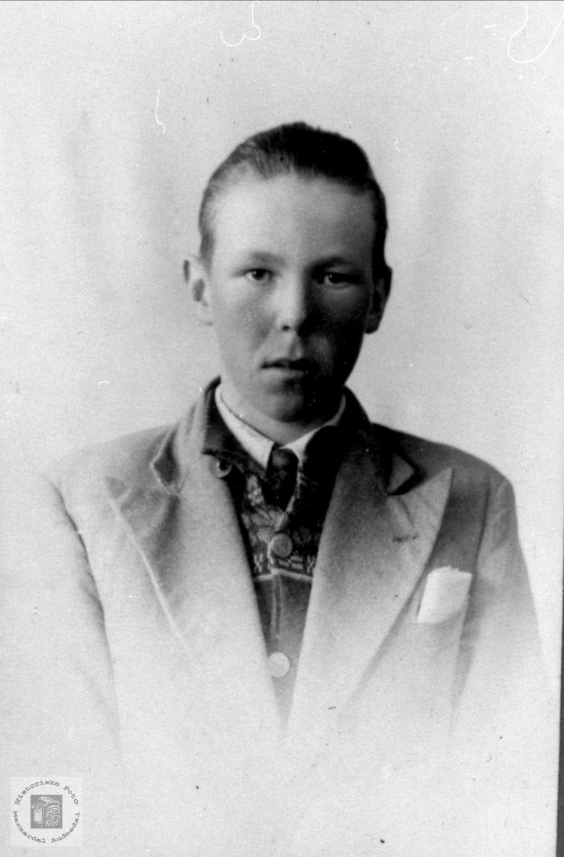 Portrett av Svend Falk, Øyslebø.